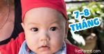 Quá trình phát triển trẻ sơ sinh 7-8 tháng