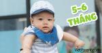 Quá trình phát triển trẻ sơ sinh 5-6 tháng tuổi