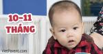 Quá trình phát triển trẻ sơ sinh 10-11 tháng tuổi