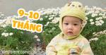 Quá trình phát triển trẻ sơ sinh 9-10 tháng tuổi